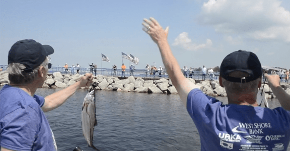 fish on for freedom