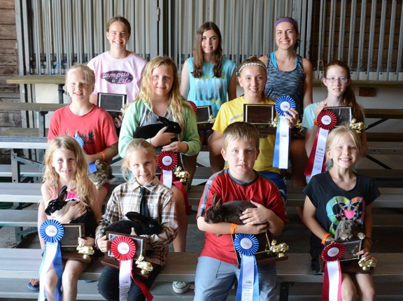 Front row, from left: Molly Moser, first place, 5-6-year-olds, Brailyn Johnson, second place, 5-6; Joseph Kline, first place, 7-8, Jenna Hepworth, second place, 7-8; Second row: Laura Hepworth, first place, 9-10, Ella Korendyke, second place, 9-10; Mikayla Kenney, first place, 11-13, Kendra Gilchrist, second place, 11-13; Third row: Miriam Wilson, first place, 14-16, Rylee Cregg, second place, 14-16; Stephanie Doyle, second place, 17-19. Missing: Sarah Hepworth, first place 17-19.