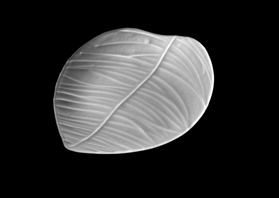 hoja-albahaca-transparente luesma vega