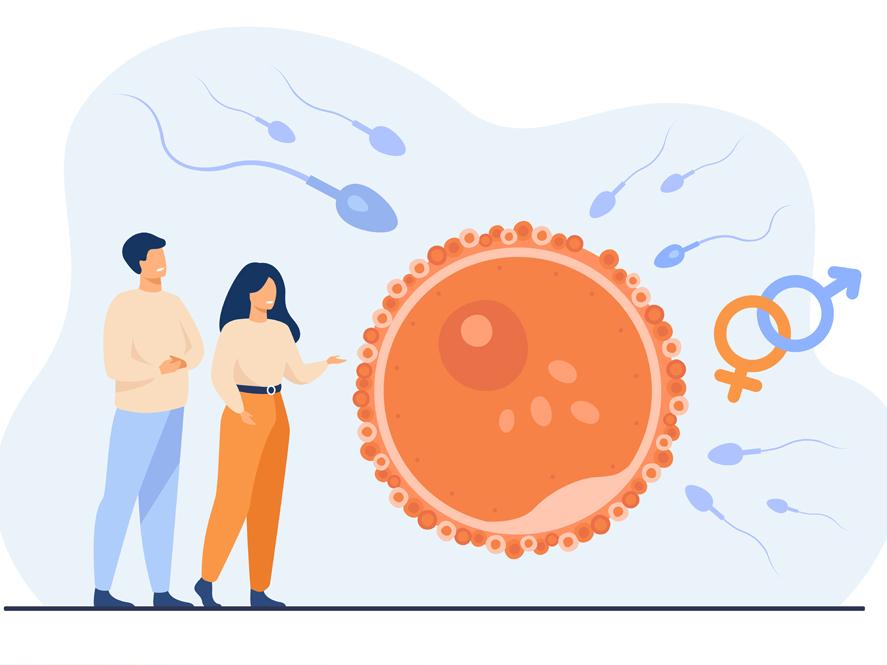 Tratamientos de fertilidad, Unidad de Reproducción VITA en Hospital IMED