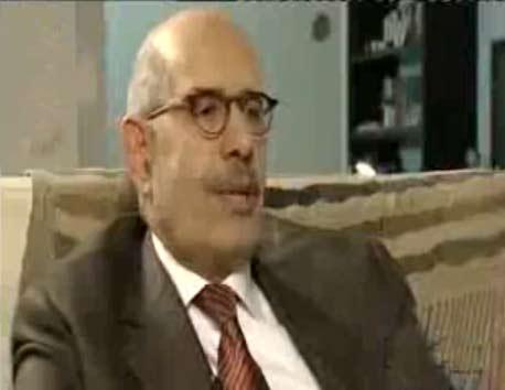 انقسام في المعارضة حول تأييد محمد البرادعي