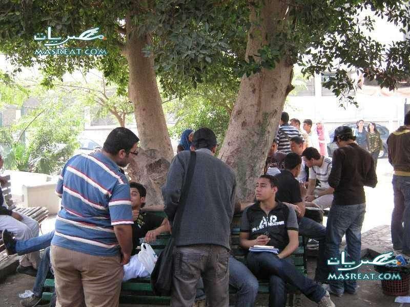 نتائج كليات جامعة حلوان على الموقع الرسمي لكل الطلاب