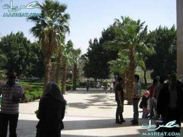 نتائج جامعة عين شمس 2019 - 2020