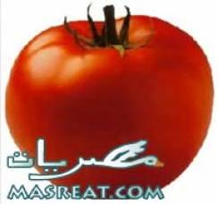 اغنية قوطة شعبان عبد الرحيم الجديدة عن غلاء اسعار الطماطم
