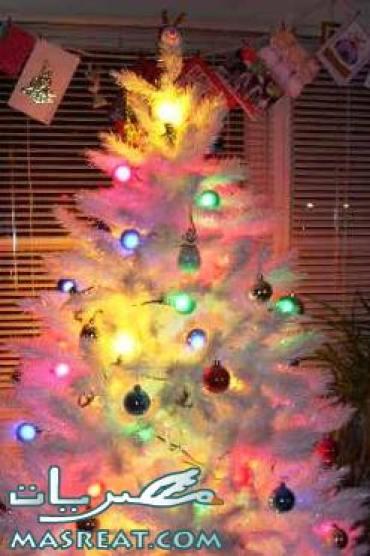 صور شجرة عيد الكريسماس 2020