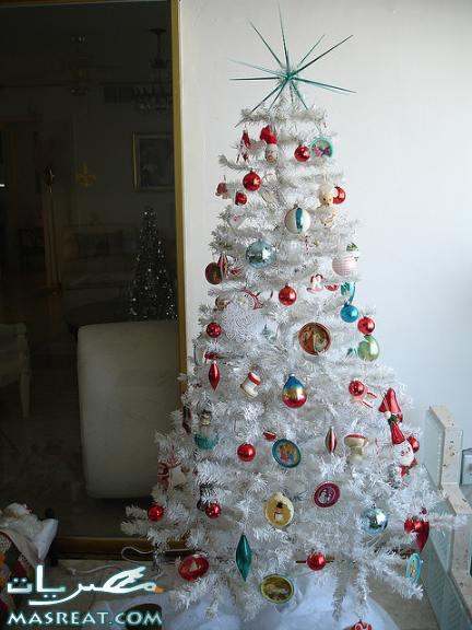 صور شجرة عيد الميلاد المجيد