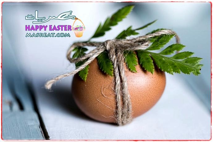 صورة بيضة شم النسيم مزينة