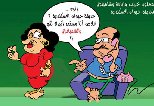 الزعيمة..احمد رجب