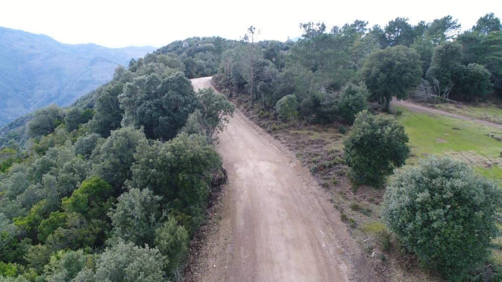SUSQUEDA_VISTA DRON 4