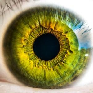 Praticien iridologue à Maison Laffitte