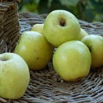 mela limoncella