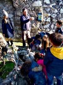 Presepe nell'ulivo secolare a Marciano, Massa Lubrense