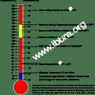Bed Bug Heat Chart