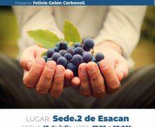 El Cabildo de Lanzarote celebrará en julio los cursos 'Elaboración y cata de vinos especiales' y 'Control de maduración. Cata de uvas'