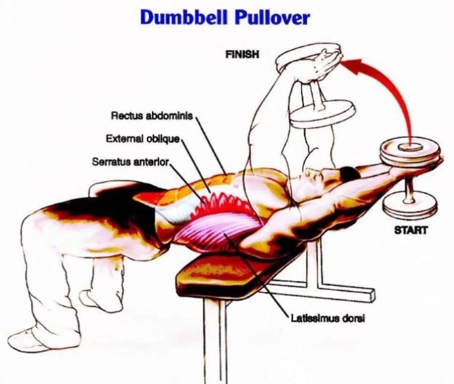 dumbbell-pullover1