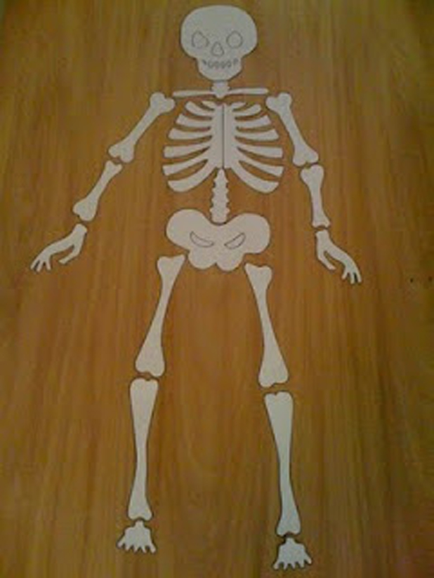 Halloween's skeleton