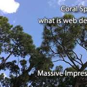 Coral Springs What is Web Design