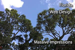 Florida Web Design