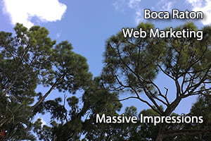 boca raton web marketing