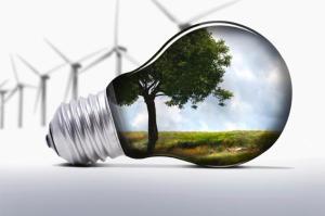 Transformación Sostenible en empresas