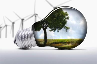 Transformación Sostenible de empresas