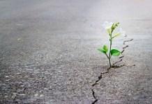 Cara Berhenti Berharap Kepada Seseorang