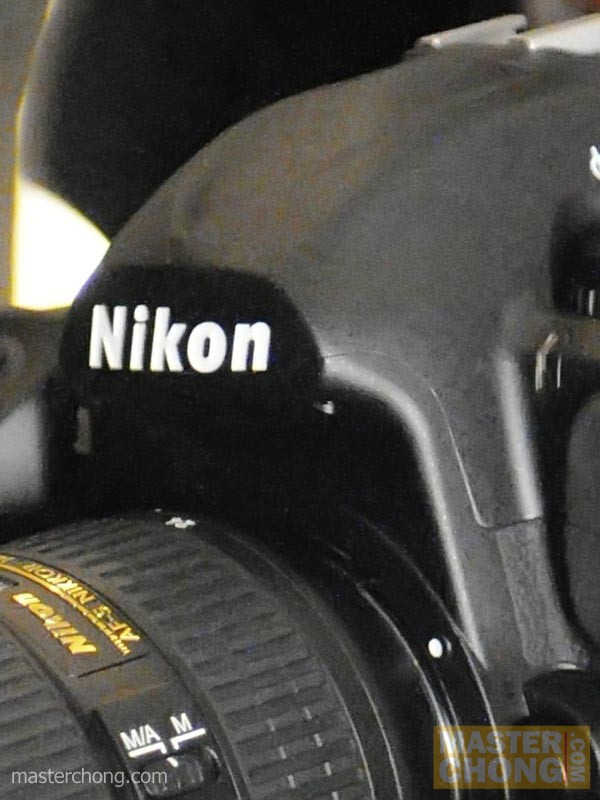 Nikon D300 ISO6400 100% after noise reduction