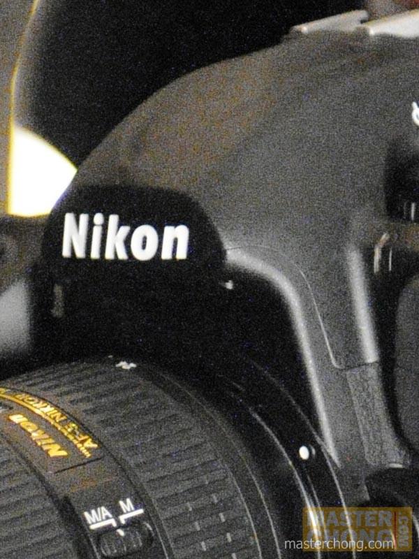 Nikon D300 ISO6400 Sample Photo at 100%