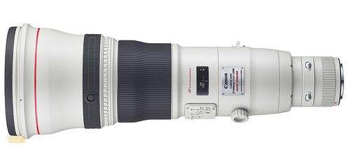 EF800mm f/5.6L IS - Top