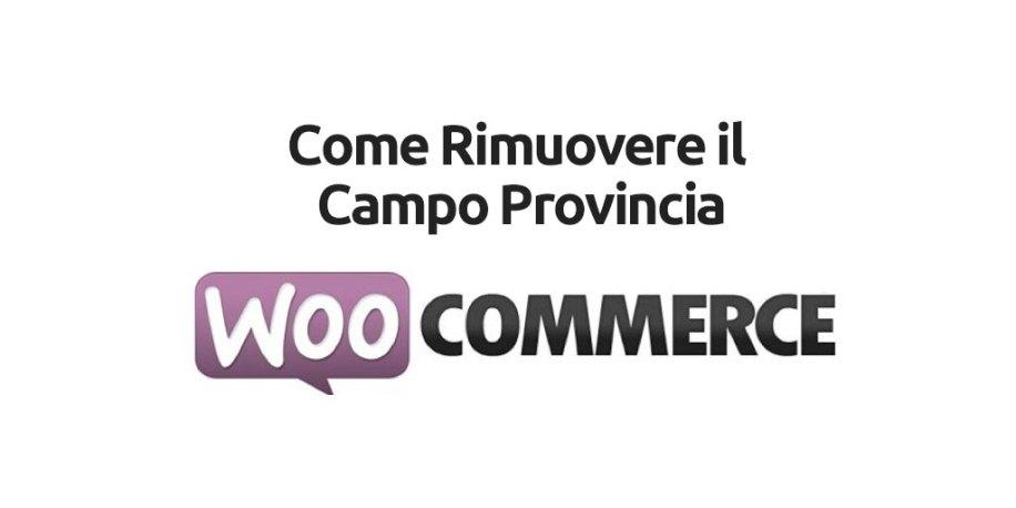 Come Rimuovere il Campo Provincia in Woocommerce