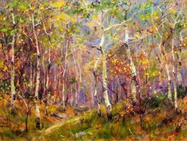 Aspen Trees - Autumn's Golden Carpet (1)