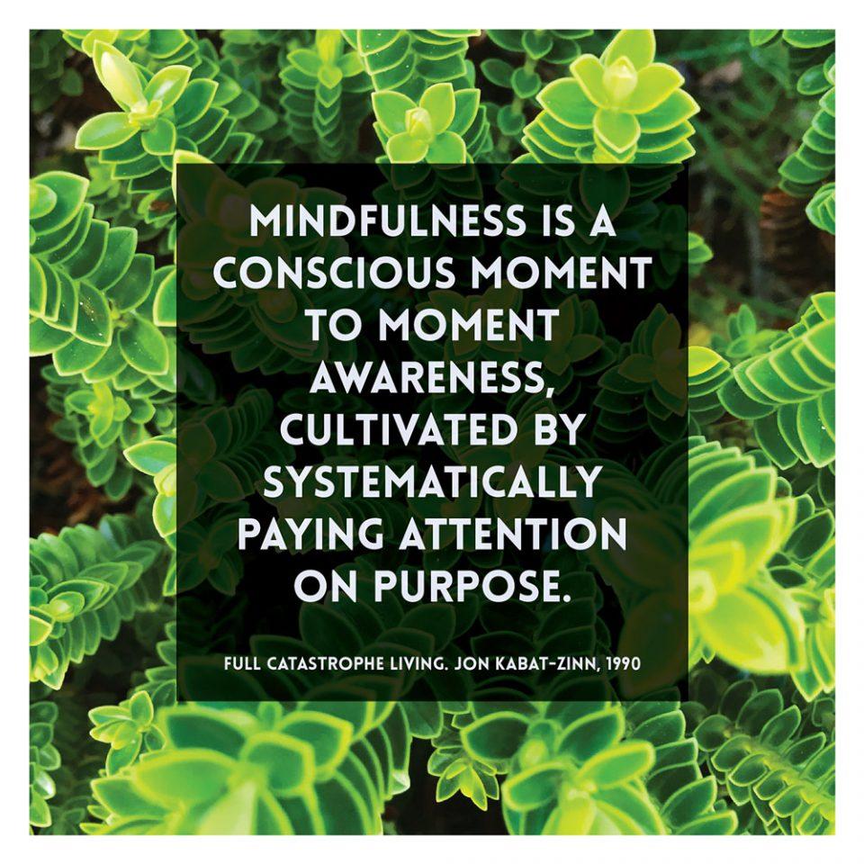 02-quote-mindfulness-awareness