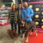 49° Exposición Nacional Canina de Asturias!!