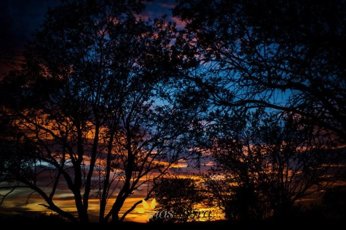 Masyebra.com - puesta de sol 1