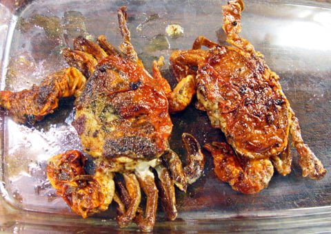 Soft shell crabs fritert