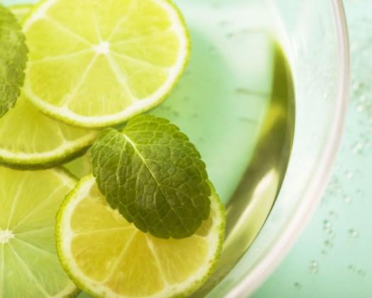 lemon-and-mint-1024x1280