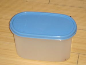 An example of a re-usable lunch container. Photo Credit: https://commons.wikimedia.org/wiki/File:Small_authentic_tupperware.JPG