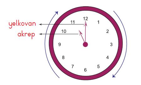 2 Sinif Matematik Tam Yarim Ve Ceyrek Saati Ogrenelim Etkinligi