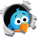 """Twitter com versão """"zero caractere"""" chamadaMayaraPetruso"""