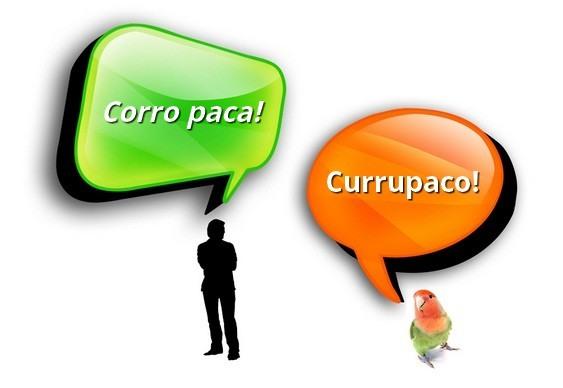 Linguagem de homens e aves