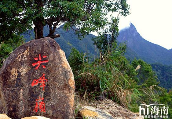 Chineses começam a entrar na Amazônia