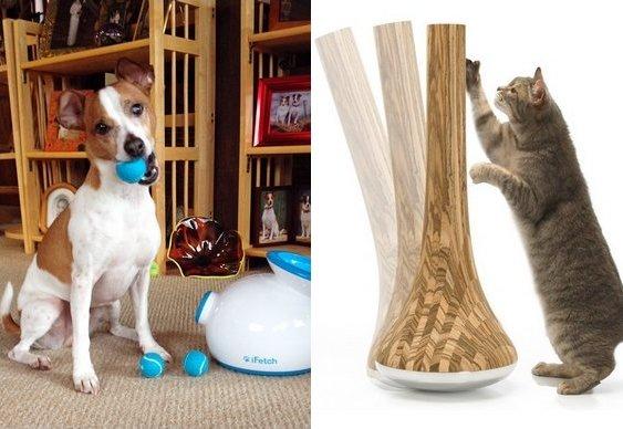 Presentes para animais de estimação