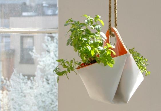 Envelopes ecológico para plantas