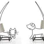 Cães e gatos nos suportes porta-rolos de papel higiênico