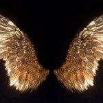 Asas de anjo realistas com réplicas perfeitas de penas em metal