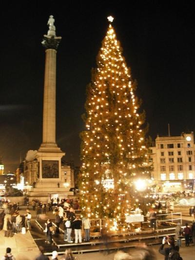 Source: http://www.london-attractions.info/trafalgar-square-christmas-tree.htm