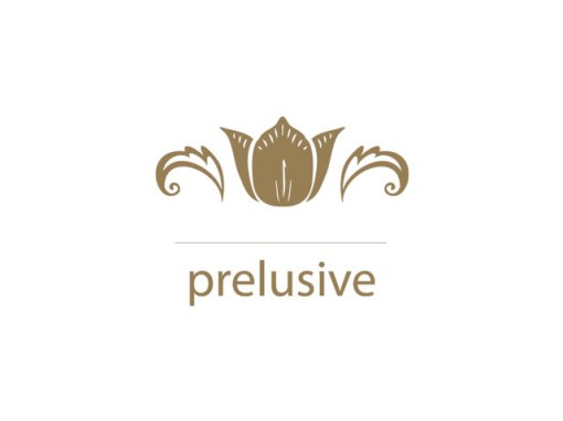 Prelusive Website