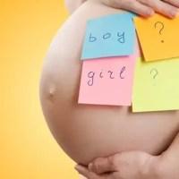 É Menino ou Menina? Vem brincar de descobrir o sexo do bebê!