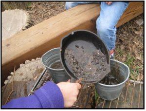 cooking mud