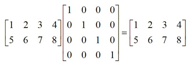 right hand multiplication by the identity